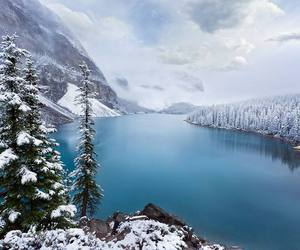 nature and winter image