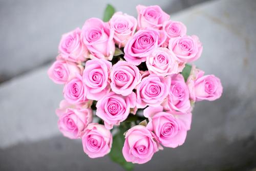 صور ورود رمانسيه   رمزيات ورود صور زهور