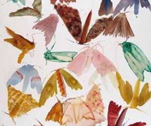 butterflies, butterflys, and painting image