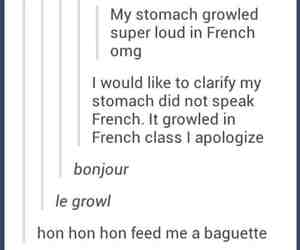 french, funny, and stomach image