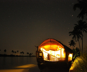beautiful, palm trees, and houseboat image