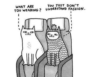cat, fashion, and funny image