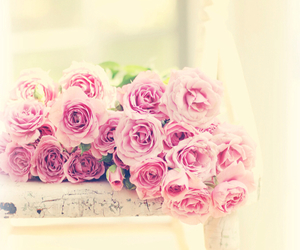 pink, floral, and flowers image
