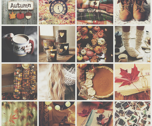 autumn, clothes, and Halloween image