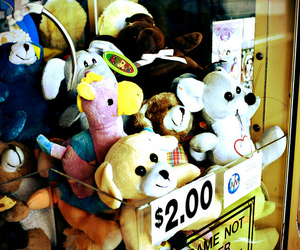 photography, stuffed animals, and toys image