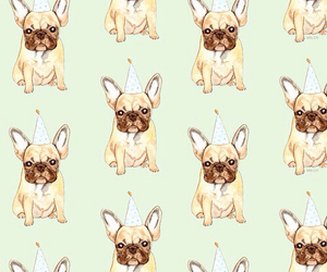 dogs, cute, and pugs image