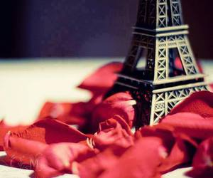 paris, rose, and red image