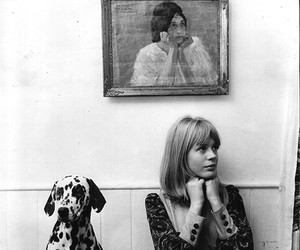 black and white, dalmatian, and marianne faithfull image