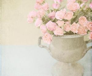 shabby rose vintage image