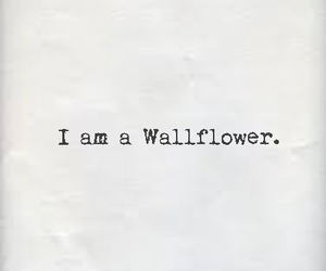 wallflower, charlie, and book image
