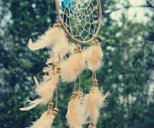 filtro dos sonhos image