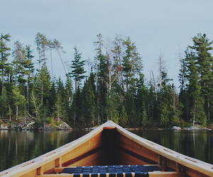 boat, forest, and lake image