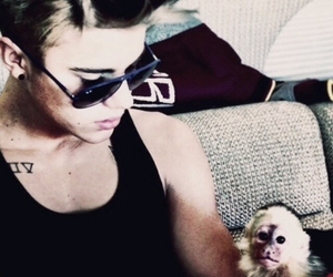 justin bieber, monkey, and justin image