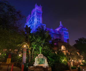 disney world, tower of terror, and hollywood studios image