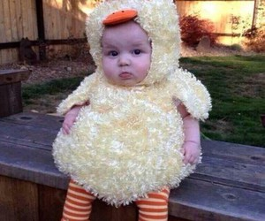 baby, Chicken, and custome image