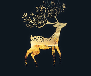 wallpaper, deer, and iphone image