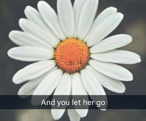 daisy, grunge, and indie image