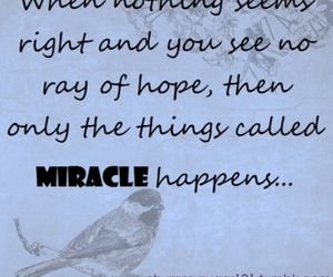 hope, things, and miracle image
