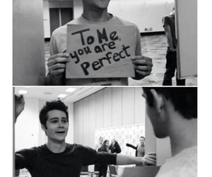 brothers, teen wolf, and to me you are perfect image