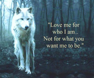 love, wolf, and quotes image