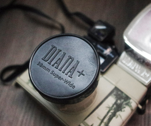 diana f+, lomography, and photography image