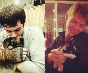 OMG, the maze runner, and tmr image