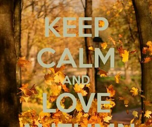 autumn, keep calm, and fall image