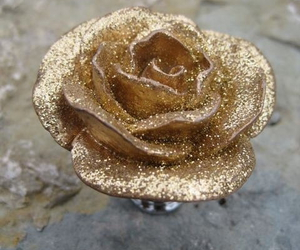 gold, sparkle in so cal, and rose image