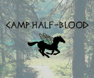 percy jackson, camp half-blood, and camp half blood image