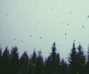 rain, grunge, and nature image