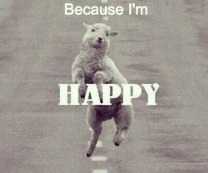 happy, funny, and sheep image