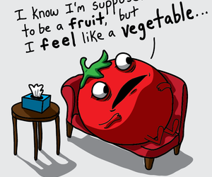 fruit and funny image