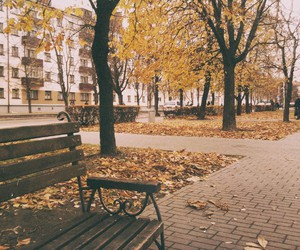 autumn, belarus, and fall image