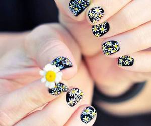 nails, flowers, and daisy image