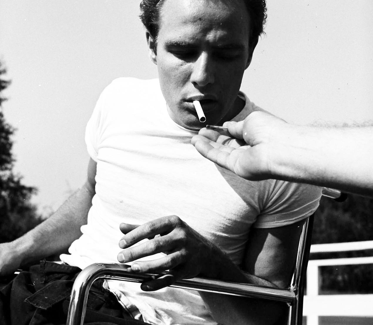 Brando's Penis Had Its Own Agenda