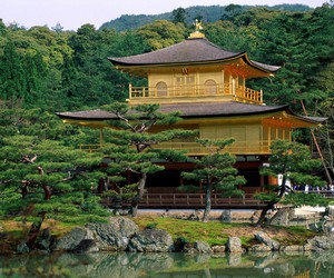 japanese and nature image