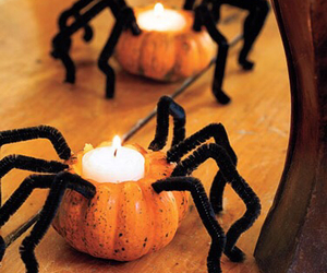 Halloween, spider, and pumpkin image
