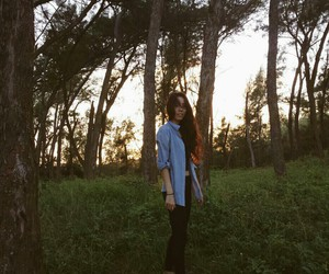 girl, sunset, and trees image