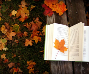 book, fall, and falling image
