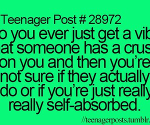 crush and teenagerpost image