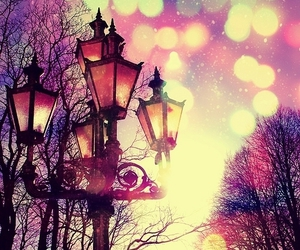 beautiful, cute, and Dream image