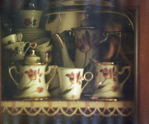 35mm, analog, and cup image