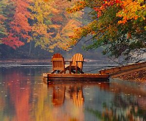 autumn, fall, and lake image