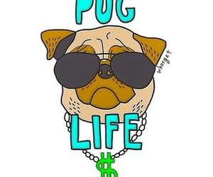 overlay, pug, and dog image
