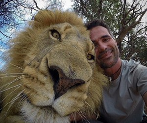 lion and selfie image