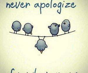 adorable, apologize, and birds image