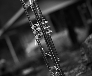 band, blackandwhite, and bw image
