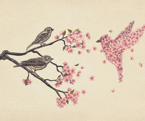 bird, tree, and blossoms. branches image