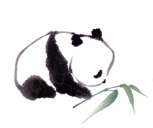 panda, cute, and art image