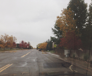 colors, fall, and hipster image